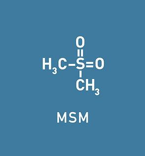 M6 MSM.jpg