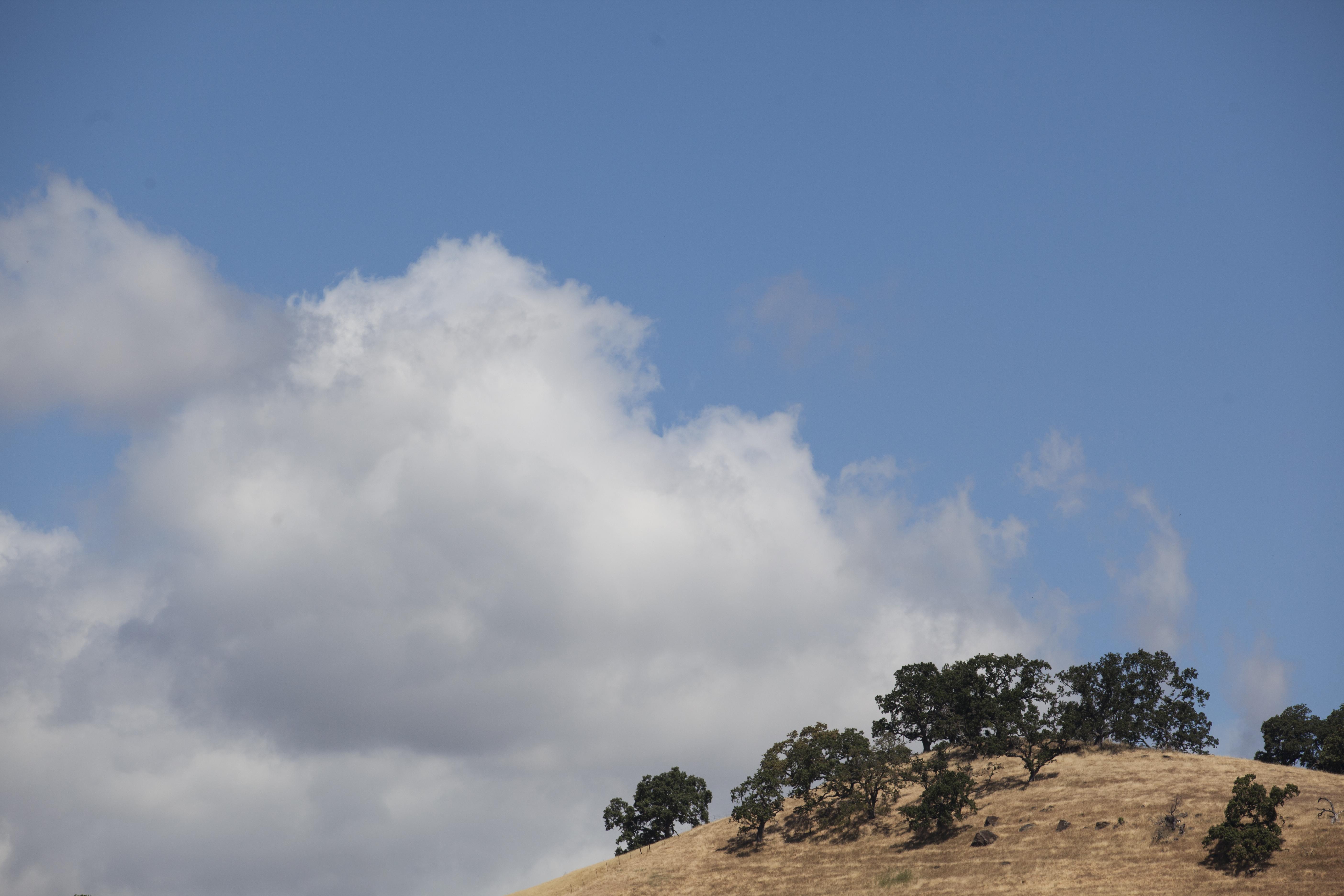 Foot Hill, Big Sky