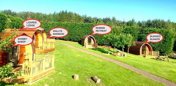 Our beautiful glamping site.