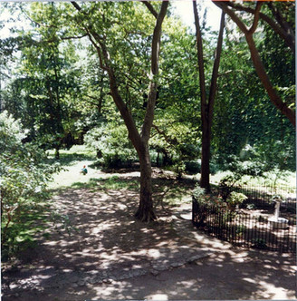 courtyard 6.jpg