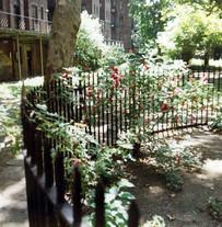 courtyard 8.jpg