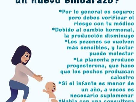 ¿Se puede lactar con un nuevo embarazo?