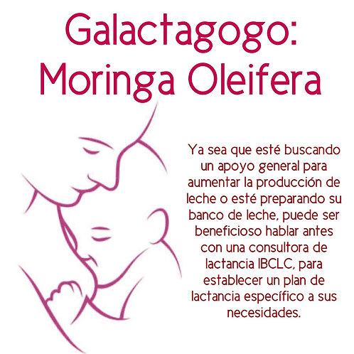Galactagogo Moringa Oleifera