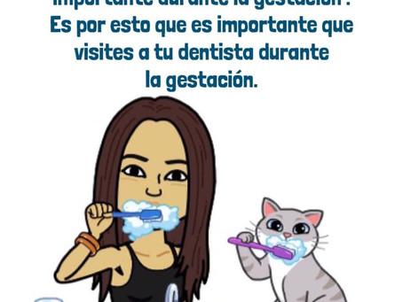 El cuidado dental es sumamente importante durante la gestación