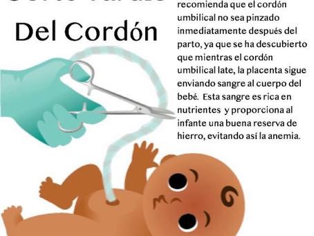 Se recomienda el corte tardío del cordón umbilical