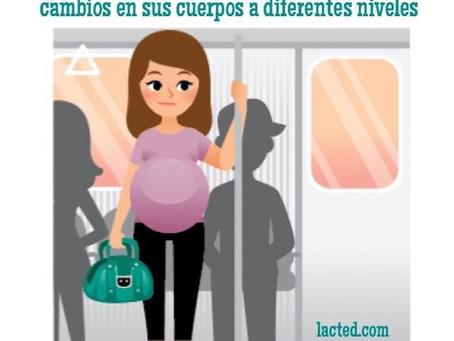 Cambios en el cuerpo de la gestante luego del embarazo múltiple