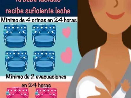 Cómo reconocer si el bebé lactado está recibiendo suficiente leche