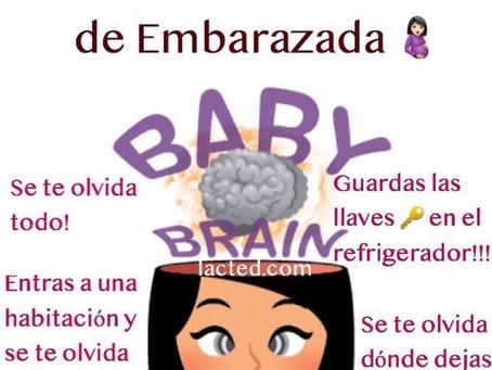 Cerebro de embarazada
