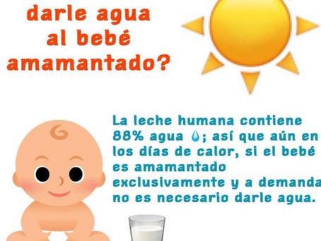 No es necesario darle agua al bebé amamantado