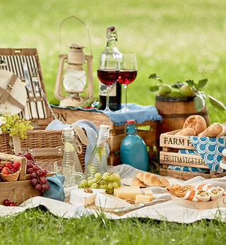 Blanket with picnic food set on green gr