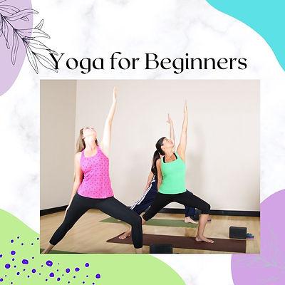 People doing beginners yoga