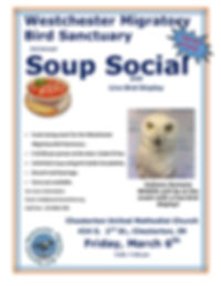 Soup Social Flyer revised 2.11.20.jpg
