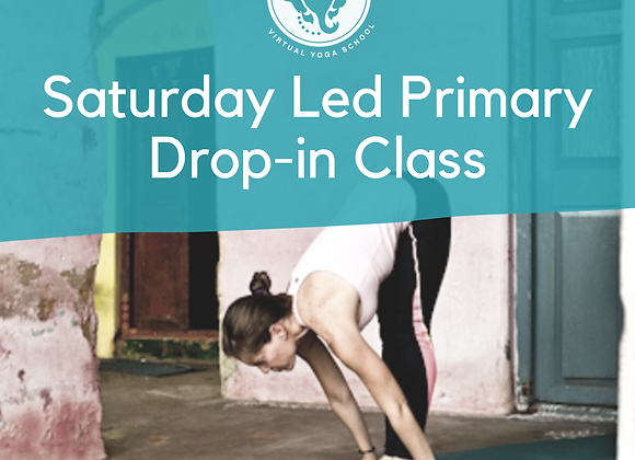 Led Primary - Drop-in