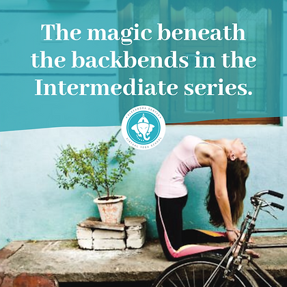 The Magic of Backbends in Intermediate Series. Sep 26th - 27th 11-1PM ET