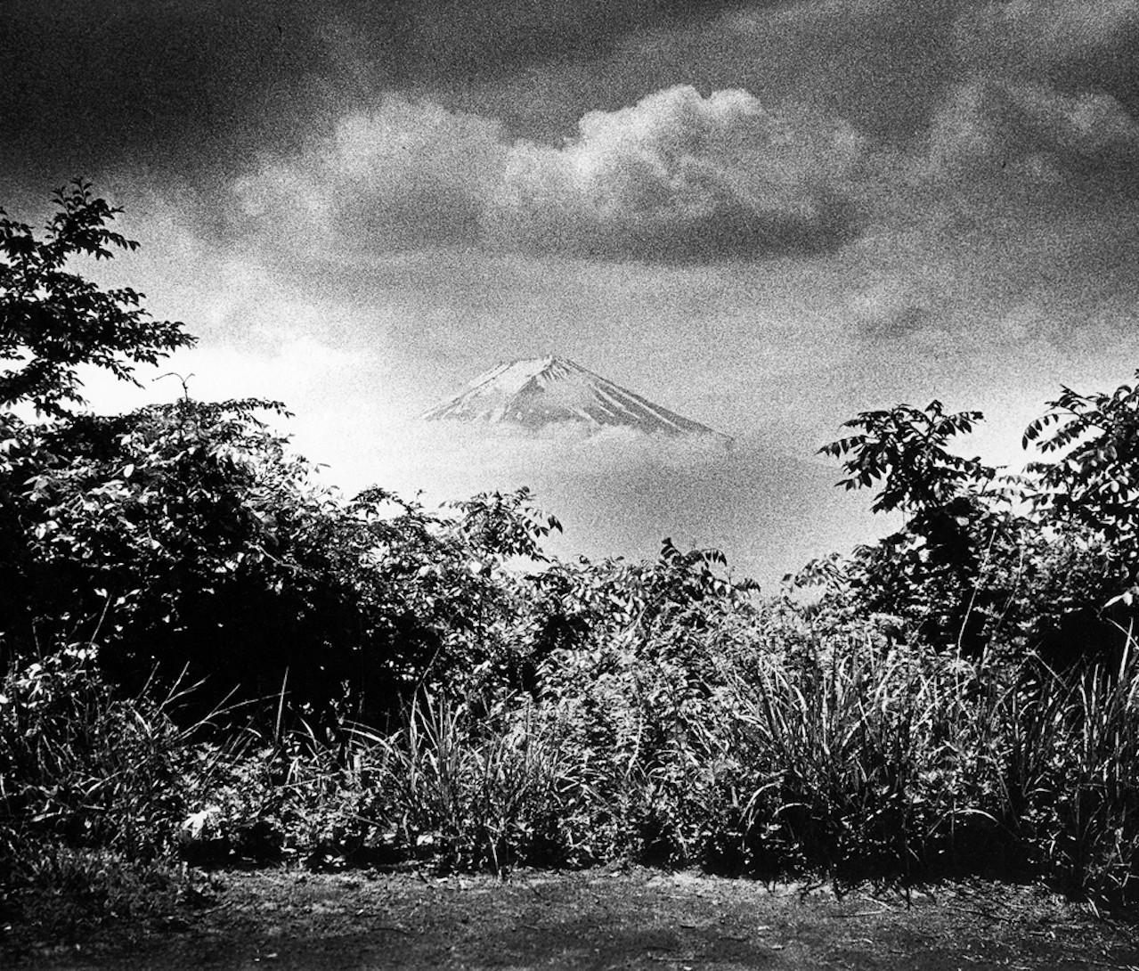 MAKI - Mount fuji 1