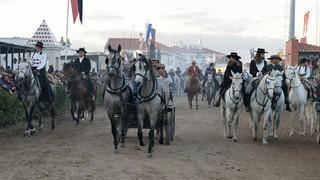 01. Lusitano Horse Festival.jpg
