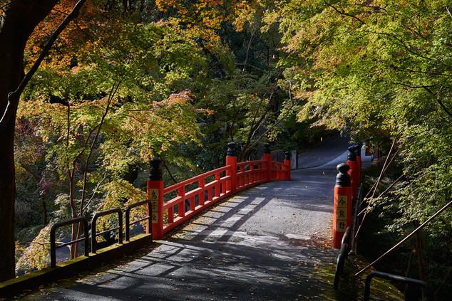 27. Bridge to Sennyu-ji.jpg