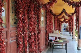 31. Drying chillies, Yunnan.jpg