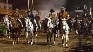 11. Lusitano Horse Festival.jpg
