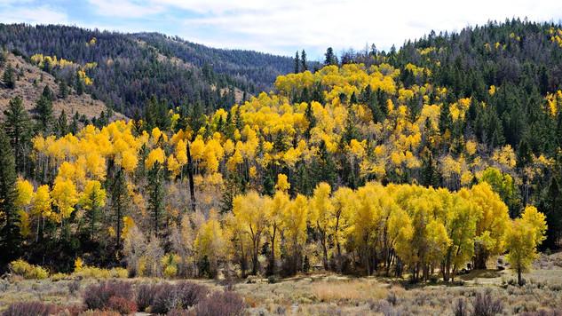 20. Utah.jpg