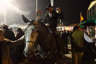 18. Lusitano Horse Festival.jpg