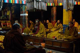 29. Praying session at Shalu Monastery.j
