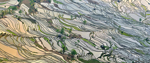 08. Rice Terraces of the Hani people, Yua