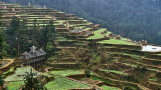 15. Terraced farming, Qiadognam, Guishuo