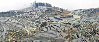 06. Rice Terraces of the Hani people, Yua