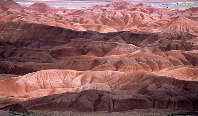 19. Painted Desert, New Mexico.jpg