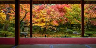04. Garden of Enko-ji Temple.jpg