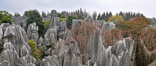 14. Stone Forest, Shilin, Yunnan.jpg