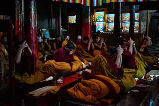 31. Praying session at Shalu Monastery.j