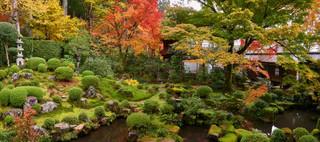 33. Garden of Sanzen-in Temple, Ohara.jp