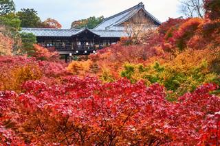 10. Garden of Tofuku-ji Temple.jpg