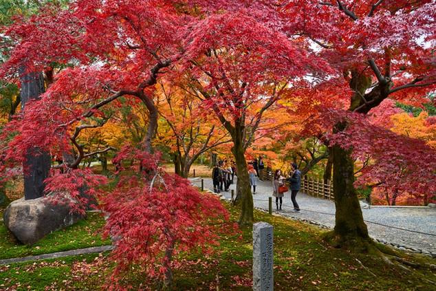 09. Garden of Tofuku-ji Temple.jpg