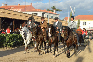 05. Lusitano Horse Festival.jpg