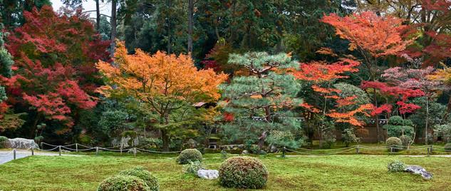 34. Garden of Sokusyu-in Temple.jpg