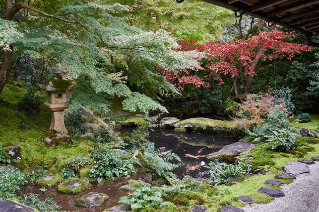 25. Garden of Ruriko-in.jpg