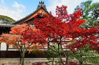 12. Temple, Honmachi.jpg