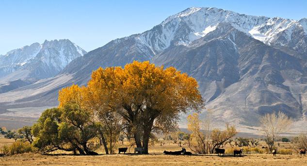 24. High Sierra, California.jpg