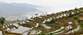 04. Rice Terraces of the Hani people, Yua
