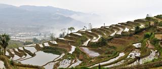 04. Rice Terraces of the Hani people, Yua