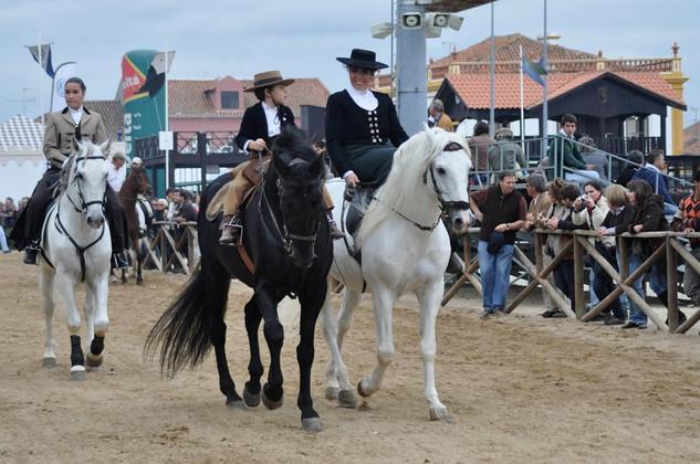 04. Lusitano Horse Festival.jpg