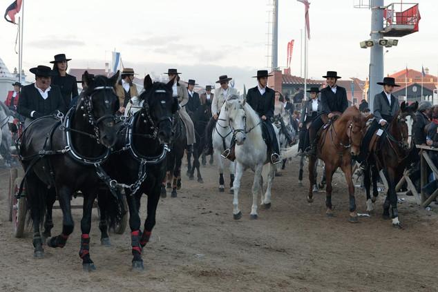 02. Lusitano Horse Festival.jpg