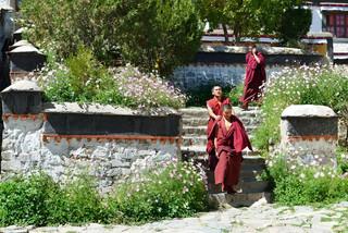 24. Monks at the Tashilhunpo Monastery.j
