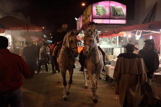 17. Lusitano Horse Festival.jpg