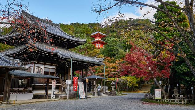 28. Sennyu-ji.jpg