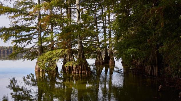 23. At the Mississippi.jpg