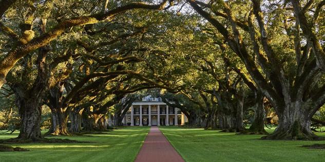 01. Oak Alley Plantation, Louisiana.jpg